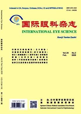 《国际眼科杂志》封面