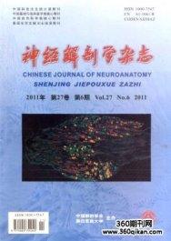 神经解剖学杂志
