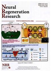 中国神经再生研究:英文版