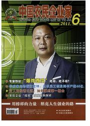中国农民企业家