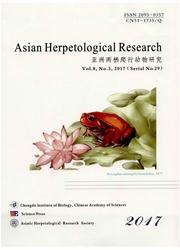 亚洲两栖爬行动物研究(英文版)